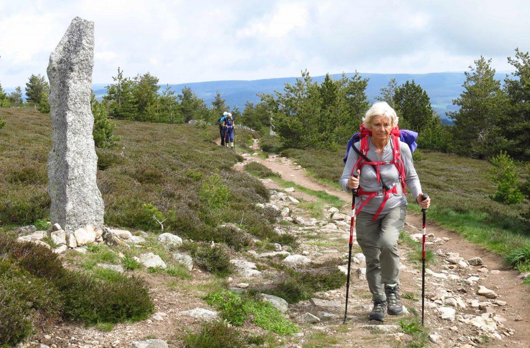 La montée vers le Mont Lozère balisée par les montjoie