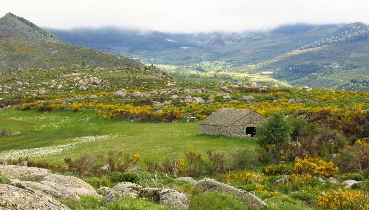La bergerie de l'Hermet, témoigne d'une activité pastorale encore bien présente